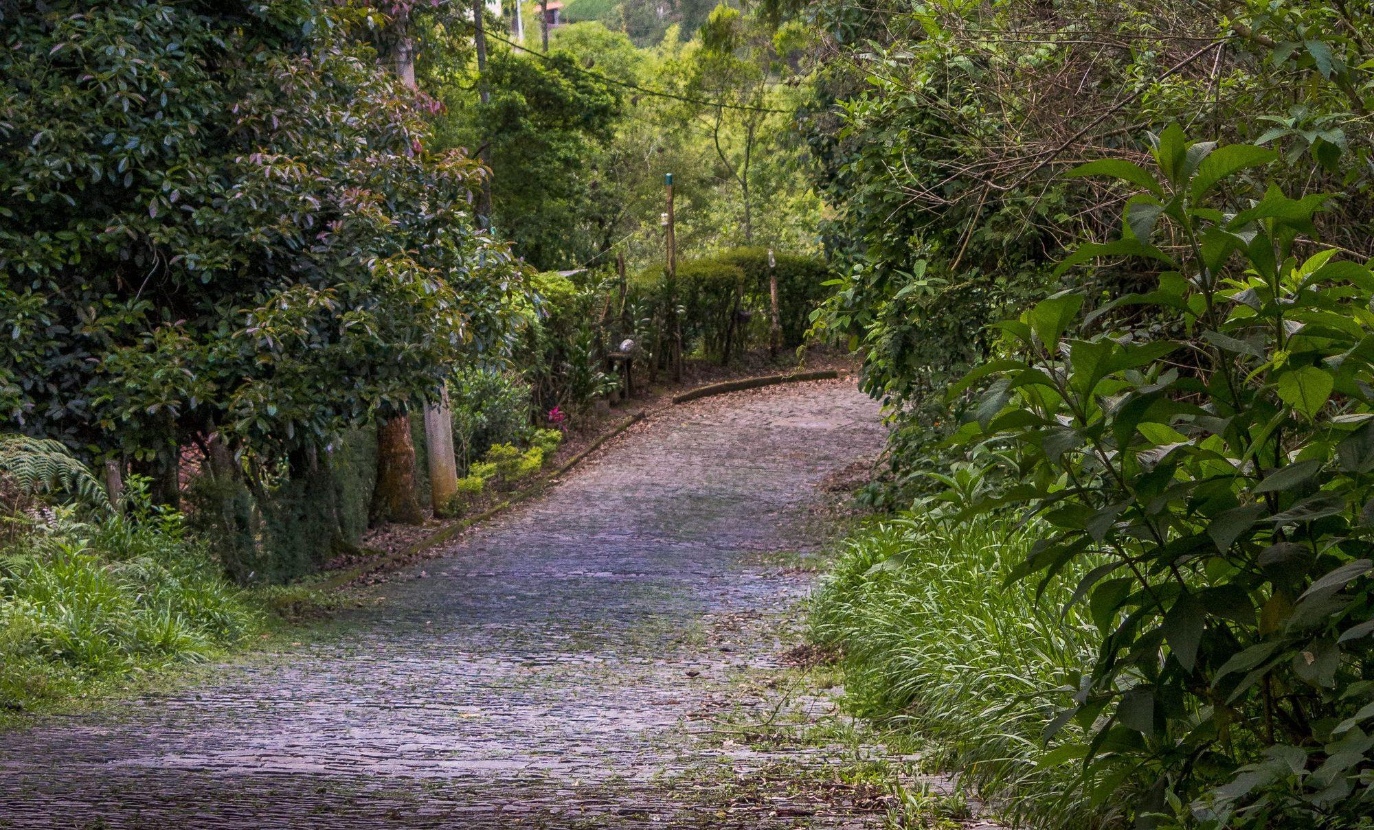 bairro Cascatinha em Nova Friburgo