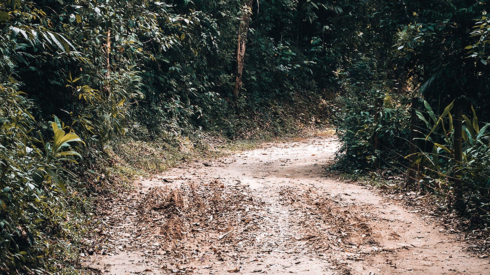 Estrada em Nova Friburgo